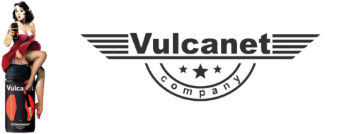 Vulcanet Logo